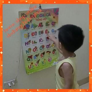 Tranh treo tường 12 chủ đề song ngữ cực kỳ cần thiết cho bé