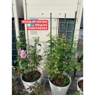 Khung đỡ cho hoa hồng leo 90cm,1m2,1m5,1m8