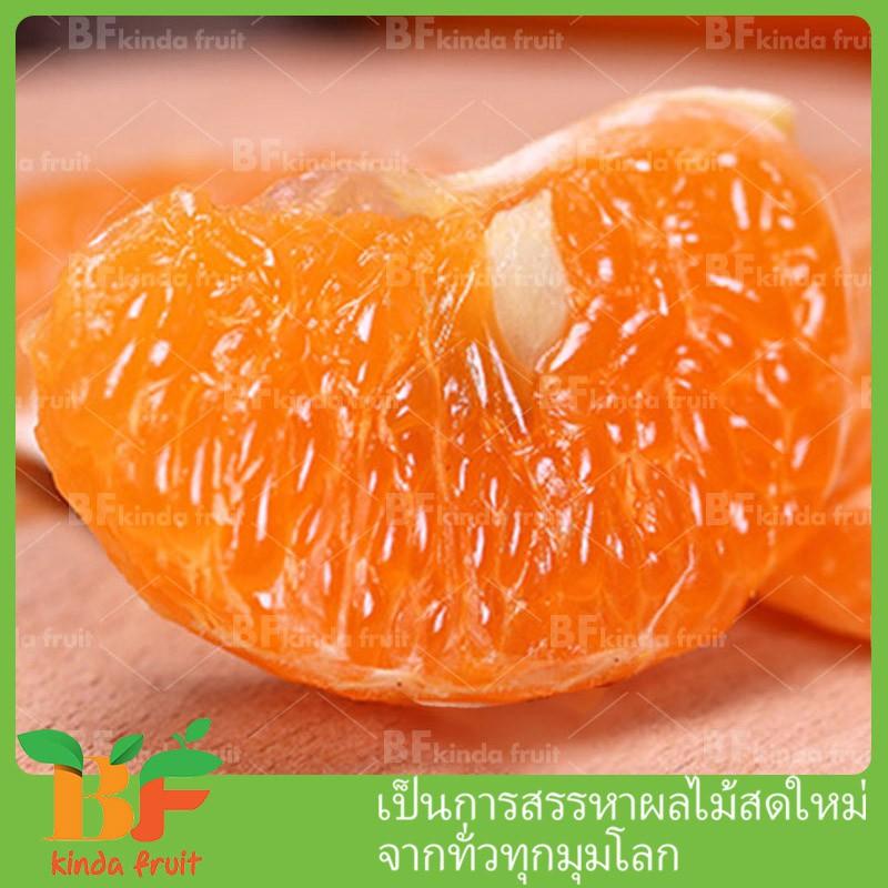 BFKindafriut ออสเตรเลียนำเข้า ส้มแมนดาริน(1kg)สดใหม่สีเหลือง วิตามิน บำรุงเลือด ผิวพรรณสวยงาม ช่วยให้มีเลือดฝาด ไต