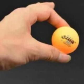 Quả bóng bàn dành cho người mới tập chơi(40mm)