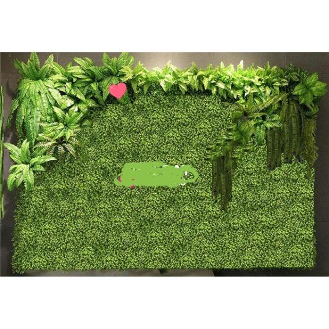 Thảm cỏ Cải xoog ( Kéo ảnh xem hình thật)