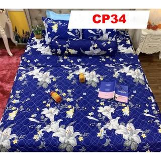 Set Chăn ga gối CP34 Cotton Poly 5 món siêu đẹp