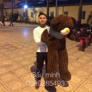 [rẻ bất ngờ] gấu bông tEdDy khổ vải:1m8 cao:1m6