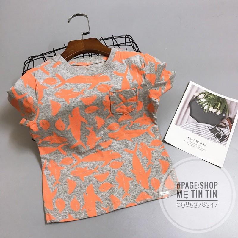Áo phông g.ap chất cotton ghi hình cá cam size:2y(11-13kg)