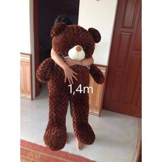 Gấu bông teddy khổ vải 1m4 hàng chất siêu dễ thương