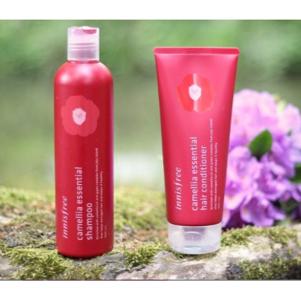 Bộ dầu Gội Phục Hồi Tóc Innisfree Camellia Essential