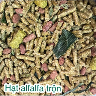 Thức ăn trộn alfalfa dưới 6 tháng cho thỏ, chuột lang (bọ, ú) thumbnail