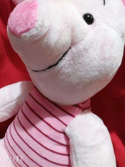 Heo bông màu hồng, quà tặng yêu thương