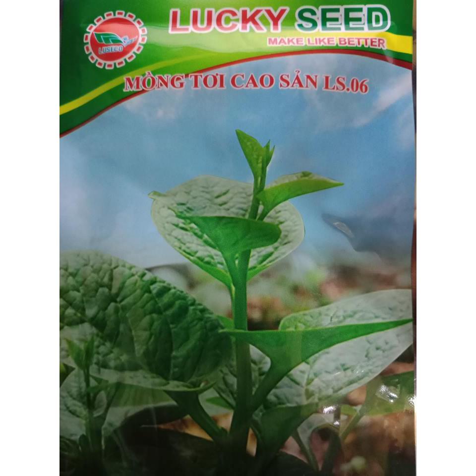 Hạt giống Rau Mồng Tơi Xanh dễ trồng chậu thùng xốp ( 20 gram)