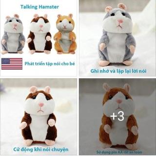 Chuột nói talking hamster