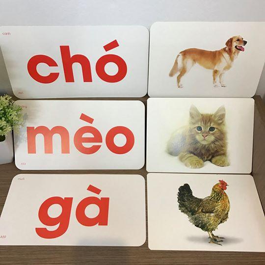 [CÓ VIDEO] SALE Bộ thẻ học thông minh loại 1 song ngữ Anh Việt loại to 14 chủ đề 280...