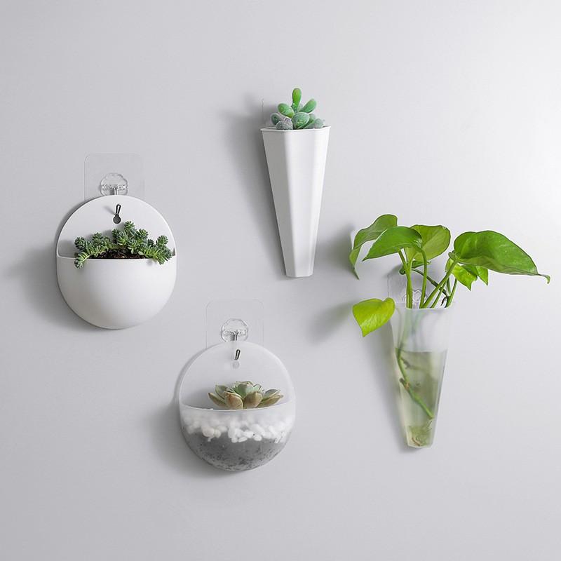 Chậu nhựa trồng cây treo tường mini | Shopee Việt Nam