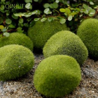 Phụ kiện đá rêu dùng trang trí xinh xắn