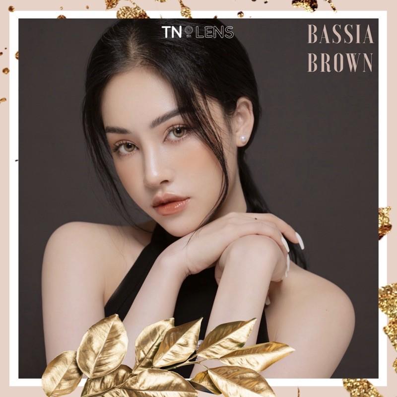 Kính áp tròng BASSIA BROWN 14.0 - Dòng cao cấp độ ẩm cao 12/24h