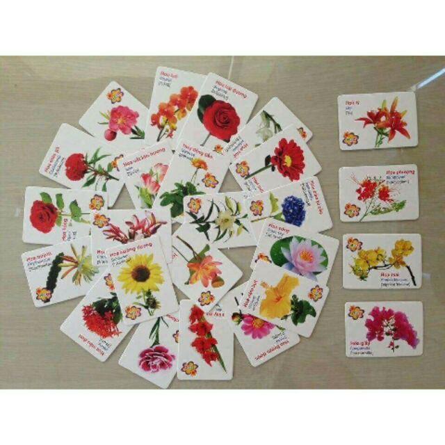 Bộ thẻ học cho bé bao gồm 16 chủ đề đa dạng (416 thẻ) - có vỏ hộp