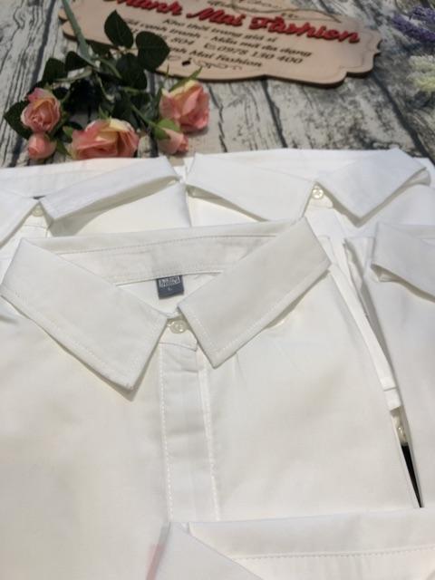 Bán sỉ áo sơ mi trắng cho nữ | BigBuy360