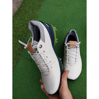 Giày golf Eco mẫu dây buộc Gt100