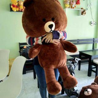 Gấu của rupi phương