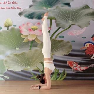 Bộ đồ tập yoga, gym, thể thao hiệu Yborn màu trắng