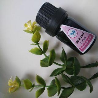 Tinh dầu xông 5ml hương hoa lan sale sốc. Sản phẩm được ưa thích tại spa. Giúp bạn giảm căng thẳng, phòng bệnh thumbnail