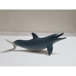 Mô hình cá heo