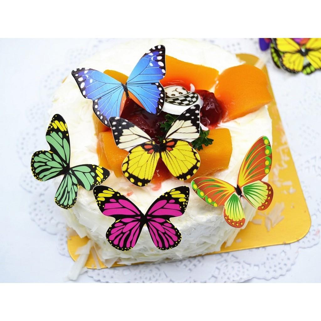 Bộ 50 mô hình bướm trang trí bánh sinh nhật - 21722589 , 2155455128 , 322_2155455128 , 40450 , Bo-50-mo-hinh-buom-trang-tri-banh-sinh-nhat-322_2155455128 , shopee.vn , Bộ 50 mô hình bướm trang trí bánh sinh nhật