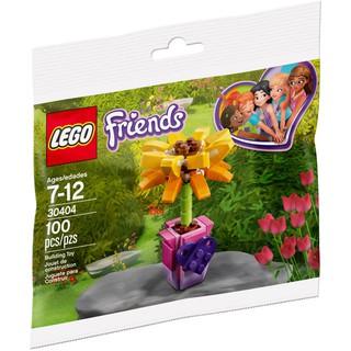 LEGO Friends Hoa Tình Bạn 30404