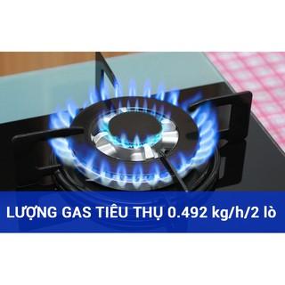 Hình ảnh Bếp gas âm Rinnai RVB-212BG – Ngắt gas tự động – Đánh lửa IC - màu đen.-4