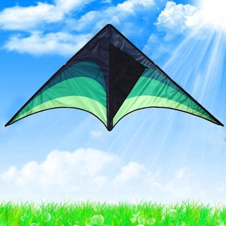 Kite 1.45m Fly Grote Outdoor Vogel Kite Toy Kite Weifang D6S8