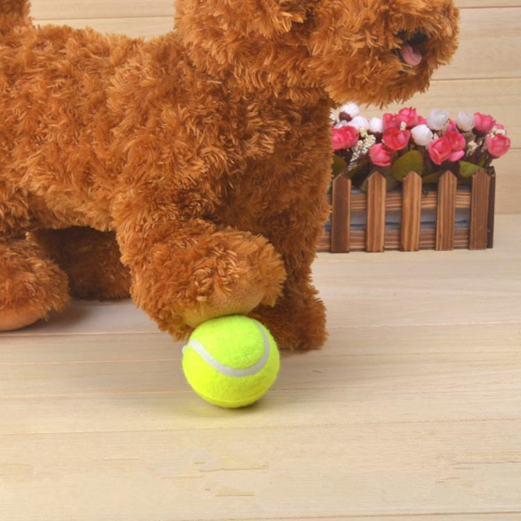 Big Giant Pet Dog Puppy Tennis Ball Thrower Chucker Launcher Play Toy 6.3CM New LONGTONG