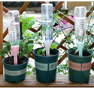 Thiết bị tưới nước tự động tiện lợi dành cho trồng cây cảnh 2