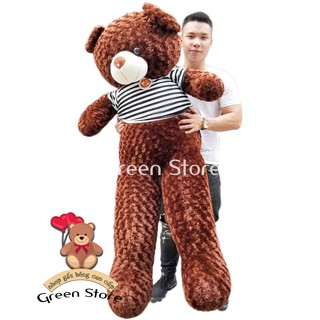 (Ảnh Thật 100%) Gấu Bông Teddy 1m8 khổ vải cao 1m6 Siêu Dễ Thương