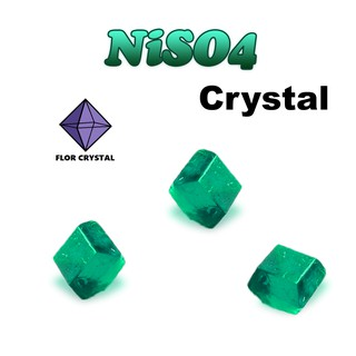 bộ nuôi tinh thể NiSO4
