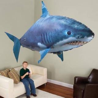Cá Mập Cá Vàng Bay Quanh Nhà Hot Hit