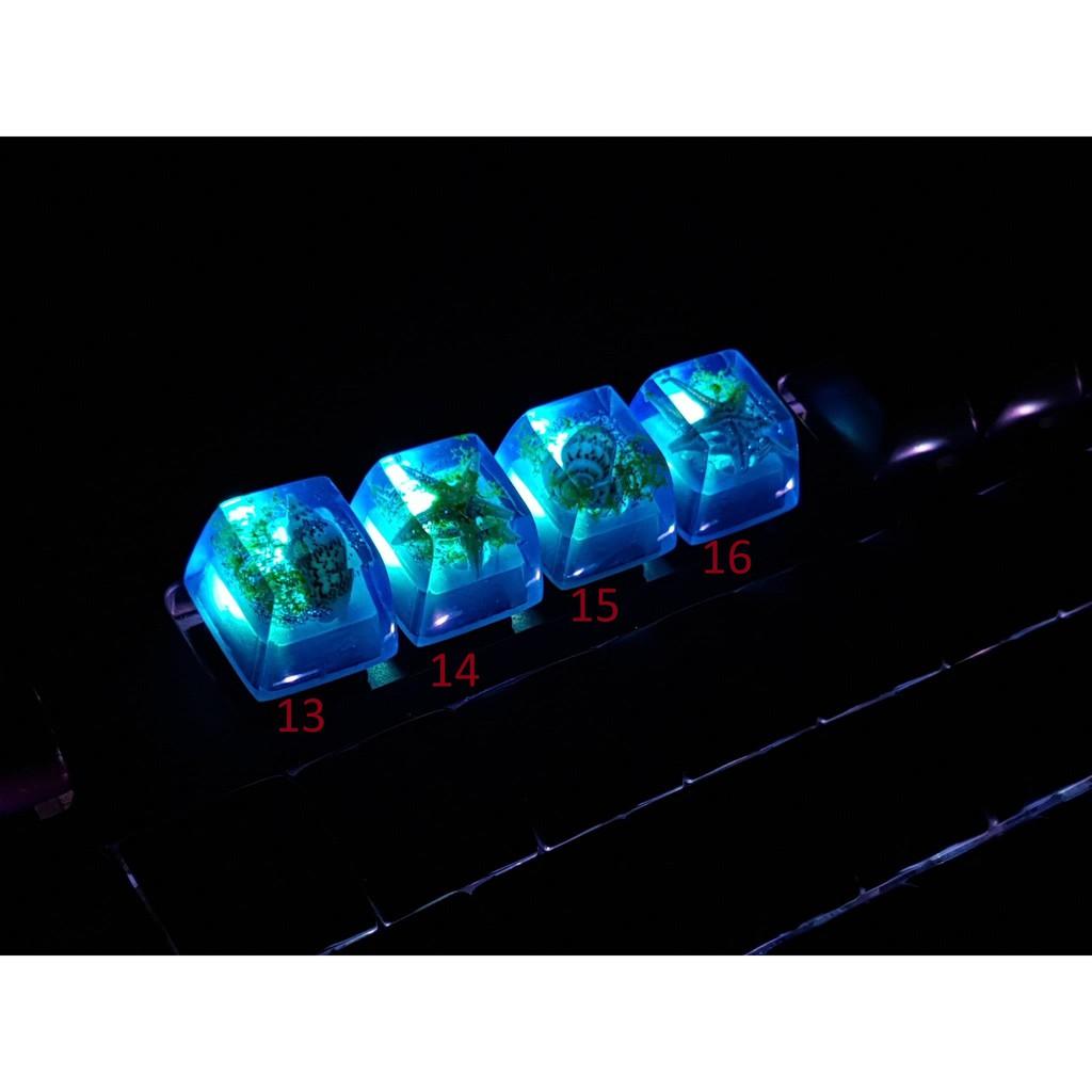 Keycap (nút) Artisan xuyên led dùng cho bàn phím cơ