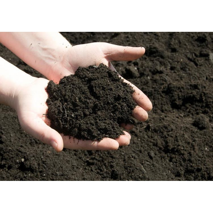 1kg Đất Dinh Dưỡng Trồng Cây Hoa Kiểng - Đất Sạch Đa Năng