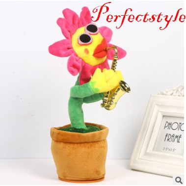 Hoa hướng dương tinh nghịch Perfect Style