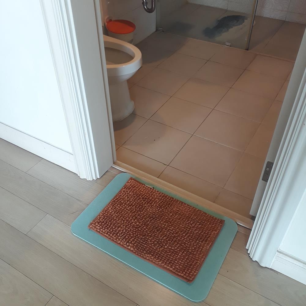 Thảm lau chân san hô thấm siêu thấm nước, thảm lau chân chống trượt, thảm lau chân nhà tắm kt 48x30cm