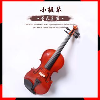 Đàn violin gỗ chất lượng cao thanh lịch