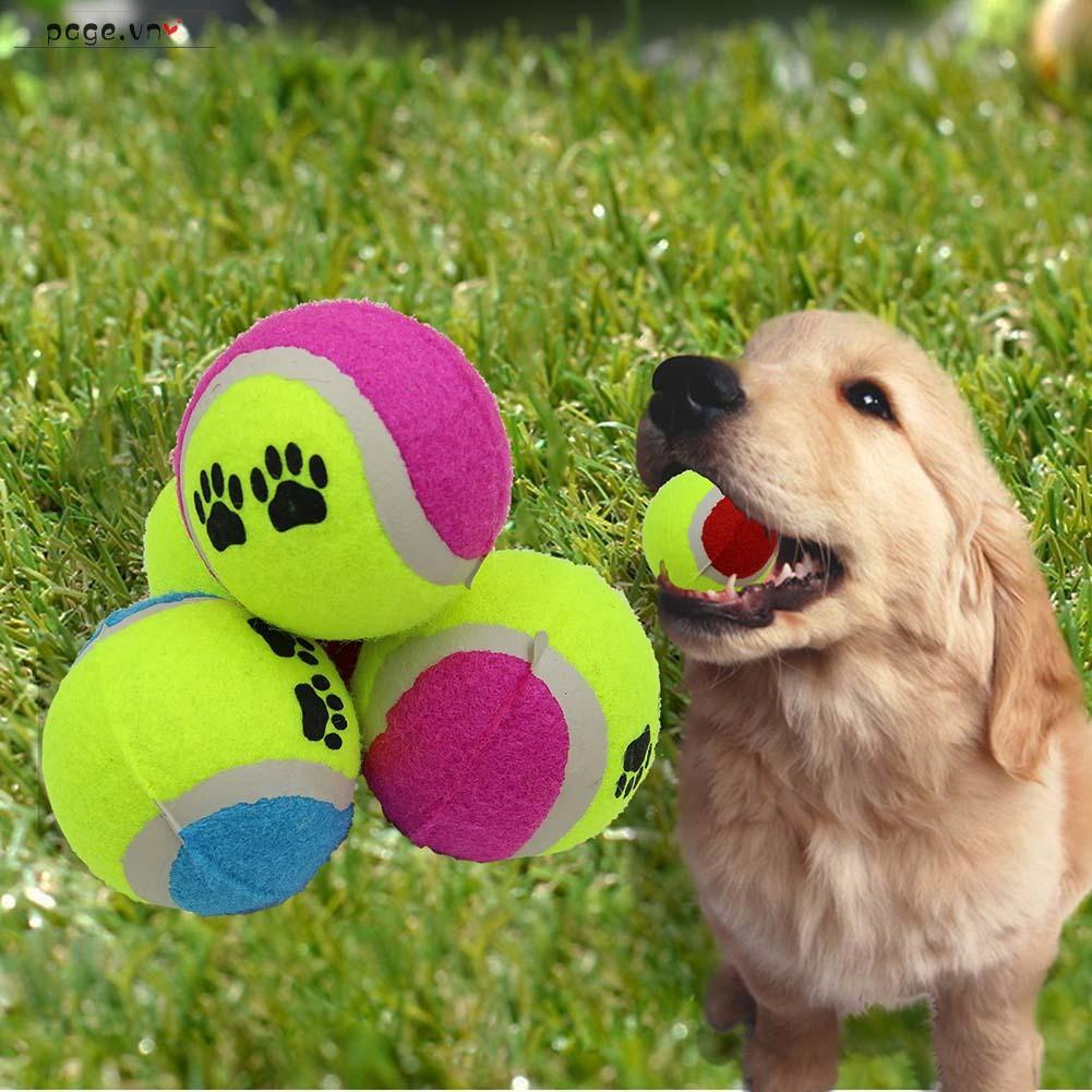 Quả bóng đồ chơi chất lượng cao cho thú cưng