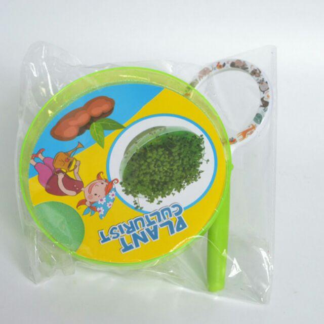 Bộ trồng cây trên đĩa peptri