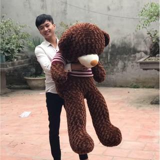 [Nhập TOYAPR10 giảm 10K]Gấu bông Teddy Cao Cấp khổ vải 1m4 Cao 1,2 màu Nâu hàng VNXK