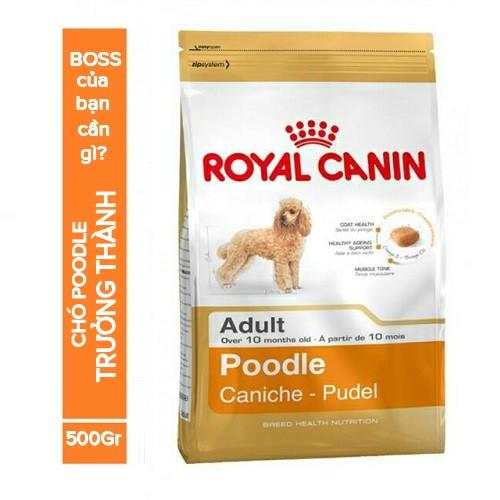 Thức ăn hạt cho chó Poodle - Royal Canin Poodle Adult - 500g (trên 10 tháng) - 9998961 , 840567226 , 322_840567226 , 114000 , Thuc-an-hat-cho-cho-Poodle-Royal-Canin-Poodle-Adult-500g-tren-10-thang-322_840567226 , shopee.vn , Thức ăn hạt cho chó Poodle - Royal Canin Poodle Adult - 500g (trên 10 tháng)