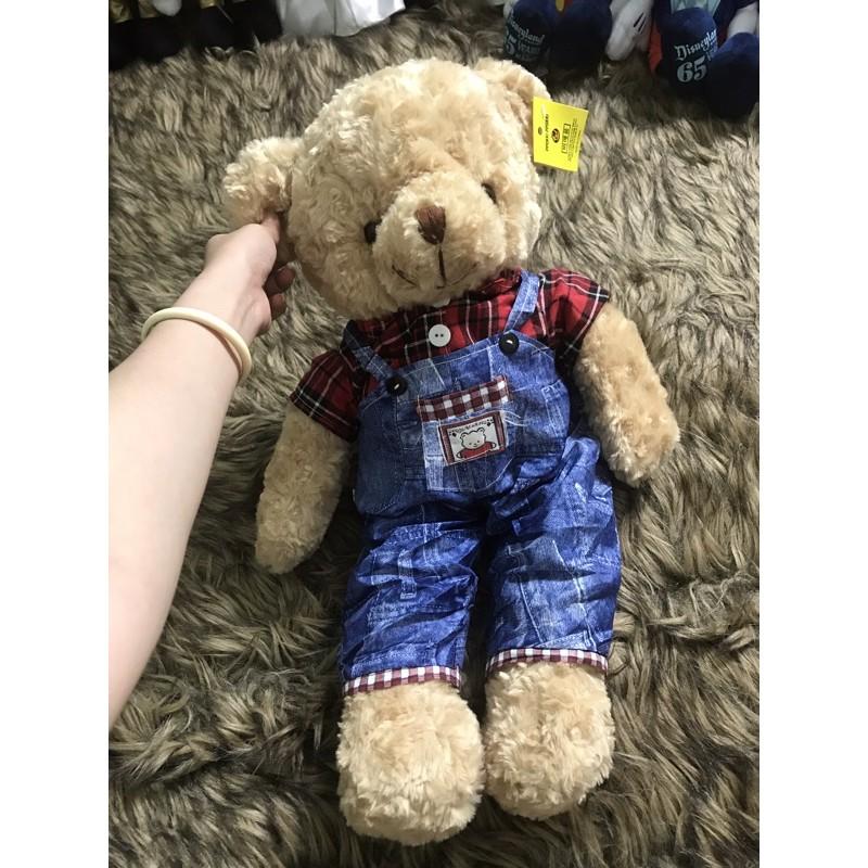 Gấu bông Teddy mặc đồ đẹp