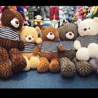 Gấu bông Teddy khổ vải 1m( Size thật 80cm)