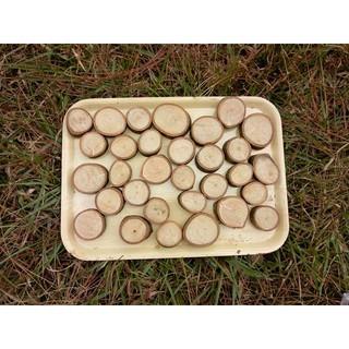 set các miếng gỗ nhỏ