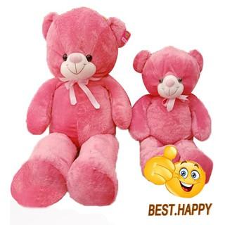 Gấu teddy lông chỉ màu hồng